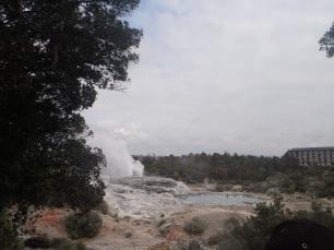 geyser!